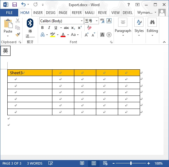 export Excel to Word 07