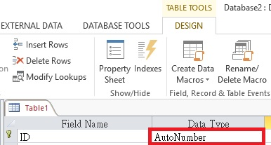 Access add Auto number 01