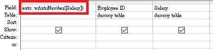 Access add Auto number 03